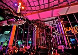 California Academy of Sciences NightLife VIP Tour