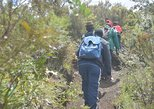 1 DAY HIKING ADVTENTURE AT MT LONGONOT FROM NAIROBI