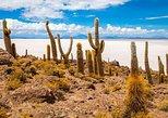 Tour Salar de Uyuni 2 días 1 noche / Servicio en Grupo / Volcan Tunupa /. Uyuni, BOLIVIA