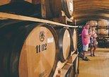 Barolo Wine Tour from Milan