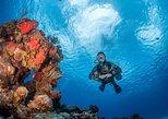 2-tank scuba excursion for certified scuba divers