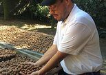 Antigua Guatemala + Macadamia Farm .