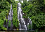 Private Tour in Bali: The UNESCO Heritage Sites and Waterfall