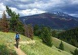 Mountain bike tour half day