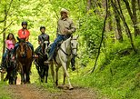 3.5 mi. Horseback Trail Ride
