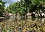 Caribbean - Puerto Rico: El Yunque Rainforest Off the Beaten Path and Bio Bay Kayaking Combo Tour
