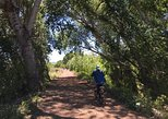 "USA - Arizona: 2 Hour Ebike Ride at ""The Peavine Trail"" (POPULAR )"