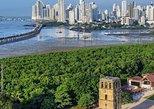 Ride Panama Canal Railway Ocean 2 Ocean; Visit Gatun Locks & Fort San Lorenzo