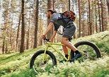 Swamps & Bogs Fat bike tour in Visaginas