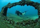 Mexico - Baja California Sur: Scuba Diving