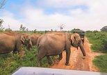 Bundala National Park Safari