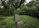 1 Day Dian Fossey Grave Hiking Rwanda Tour