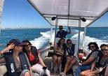 Ria Formosa boat tour & BBQ lunch in culatra Island