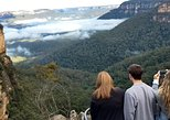 Blue Mountains Private Tour inc. wild kangaroos and ferry ride