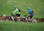 E-bike guided tours in Romania