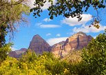 Private Zion Day Trip from Las Vegas