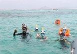 2h Snorkeling trip