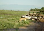 Africa & Mid East - Botswana: Chobe Day Trip - Photographic Safari