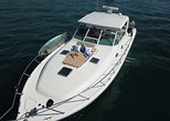 Private Fishing Cruise, 1-4 Person, 6 Hours