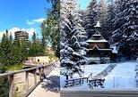 From Krakow: Slovakia Treetop Walk and Zakopane Tatra Mountains