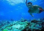 Pacific Boat - PRIVATE Premium snorkeling tour by speedboat