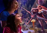 Newport Aquarium Admission With Free $10 Gift Shop Credit Included