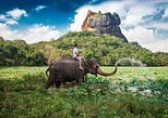 3 Days Tour to Sigiriya, Kandy & Nuwara Eliya from Colombo