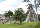 Tikal Private Day Tour From Belize Border