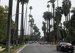 Private Hollywood and Beverly Hills Tour Departing from Santa Monica