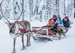 Best private tour to Reindeer farm in Rovaniemi
