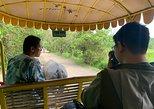 A private daytour to Villa Escudero from Manila