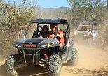 Mexico - Baja California Sur: Cabo Original Real Baja Tour (Double UTV)