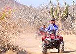 Mexico - Baja California Sur: Migrino Beach & Desert Tour (Single ATV)