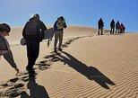 Swakopmund Dune Sanboarding Day Tour