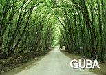 1 day Guba tour