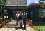 Dolphin Cove Private Tour