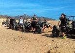 Mexico - Baja California Sur: Cabo Dune Buggy- The Off Road Adventure