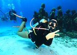 Experience Diving Under Water Museum and Reef for beginners