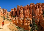 Private Bryce Canyon Day Trip from Las Vegas
