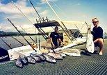 FISH WHISPERER - FISHING & DOLPHIN WATCHING CHARTER