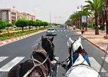 Marrakech Ramparts & Gardens Guided Tour