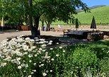 8hr- Private Napa - Sonoma Wine Tour. Custom Built Itineraries.