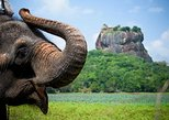 13 DAY'S IN SRI LANKA PERFECT TOUR