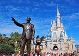 explore magic kingdom in walt disney world
