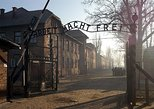 1 Day Auschwitz-Birkenau Shared Guided Tour from Krakow