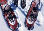 ENJOY THE ARCTIC THE LAPPISH WAY - Snowmobile, Ice Fishing & Snowshoeing