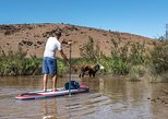 Desert SUP Experience from Marrakech including authentic lunch