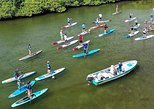 Caribbean Stand Up Paddle Day Trip