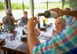Pizzorno Wine Experience - Guided and Private Experience with Pick up Included
