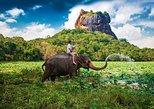 1 Day Tour of Sigiriya and Dambulla
